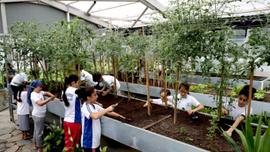 Çocuklar Botanik Bahçesi'nde vakit geçiriyor