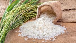 Tanzim satış noktalarında pirinç satışları başladı