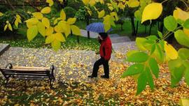 12 Ekim hava durumu - Hafta sonu hava nasıl olacak