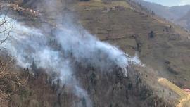 Karadeniz'deki yangınlar neden çıkıyor? İşte cevabı