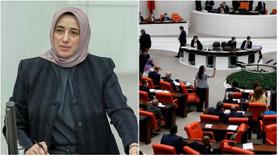 Özlem Zengin'den HDP'li vekillere tarihi ayar