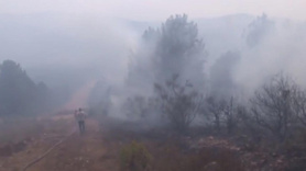 Aydos Ormanında yangın
