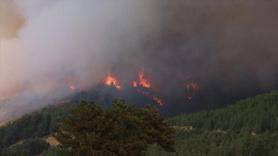 Adana'da yangın, 6 köyde 800 ev boşaltıldı