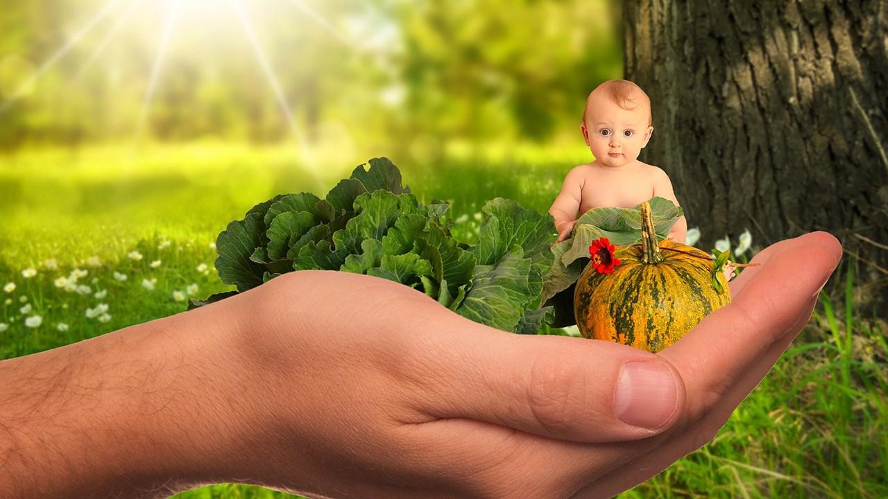 Sebze yemeyen çocuklara sebzeyi sevdirmenin yolları