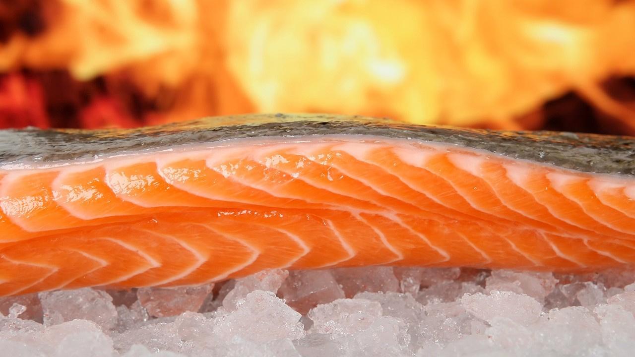 Hangi mevsim hangi balık yenmeli? Balığın faydaları