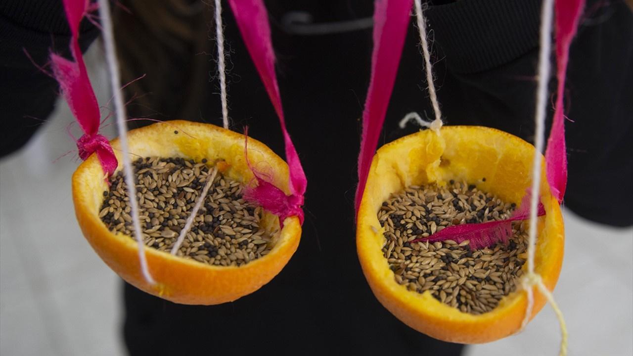 Portakal kabuğundan yemlikler
