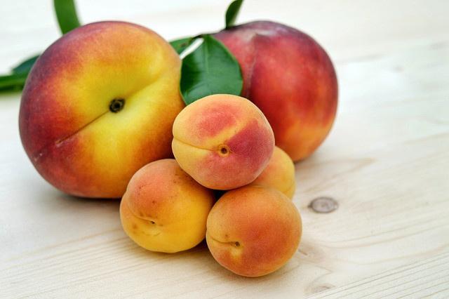 Hacıhaliloğlu, alyanak ve Şam hangi meyvenin türleridir