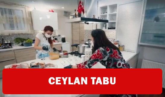 Zuhal Topal Ceylan'a kaç puan verdi