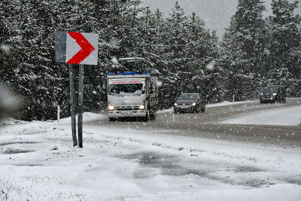 Erzurum ve Kars'a Mayısta kar yağdı - Sayfa 2
