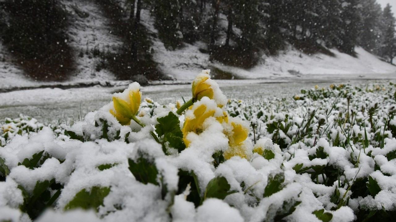 Bolu'da Mayıs ayında kar yağdı