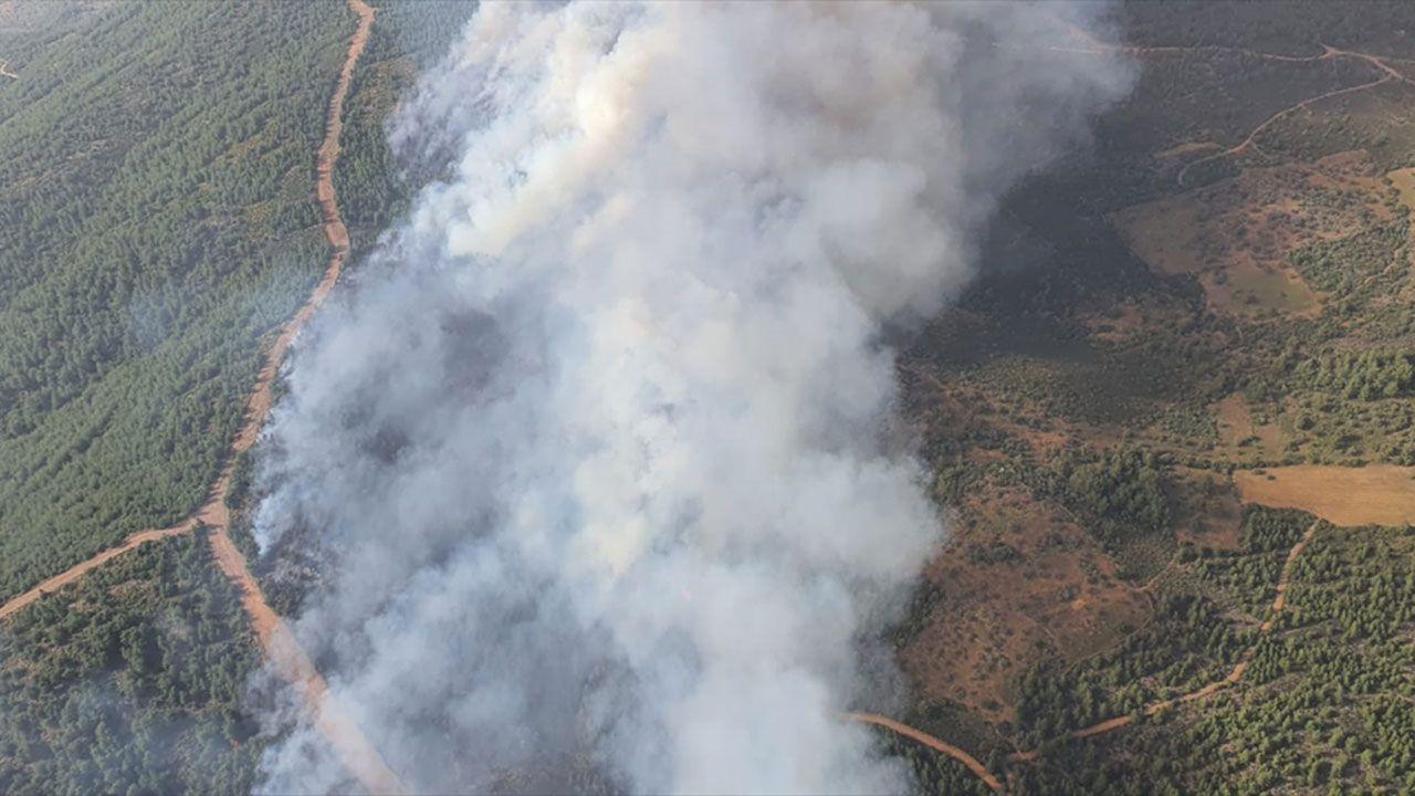 Milas'ta orman yangını, müdahale sürüyor - Sayfa 4