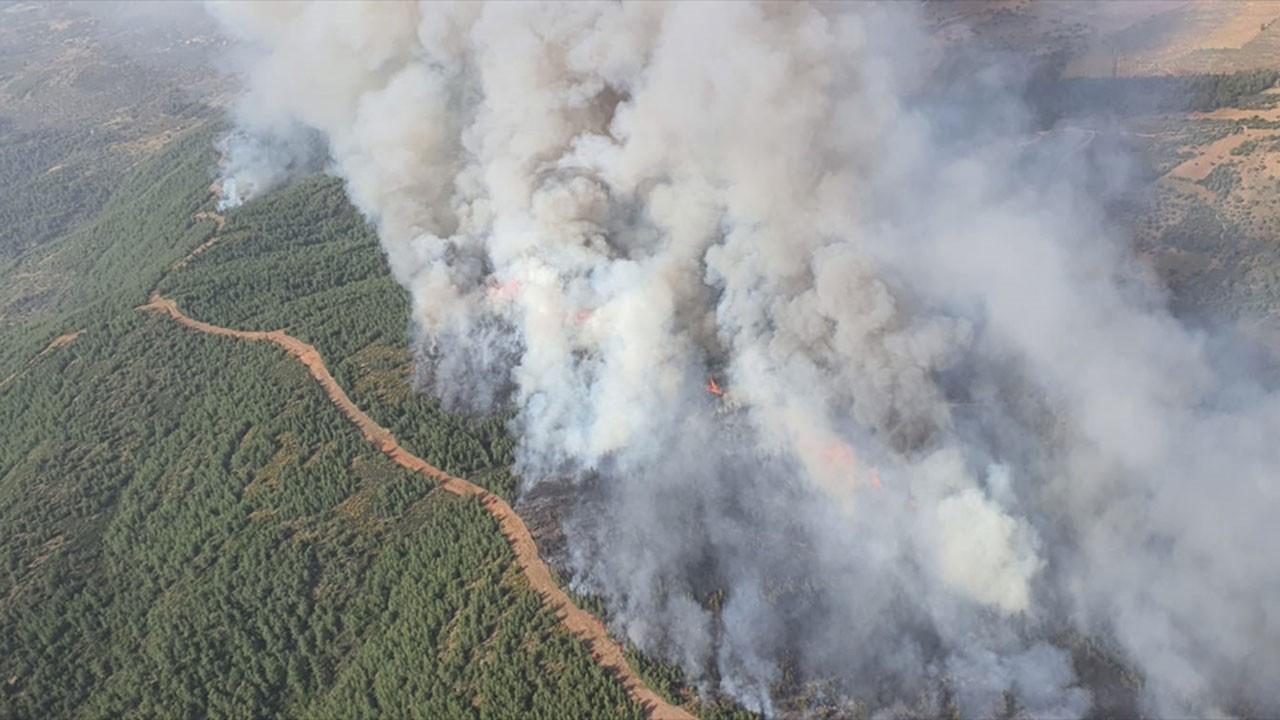 Milas'ta orman yangını, müdahale sürüyor