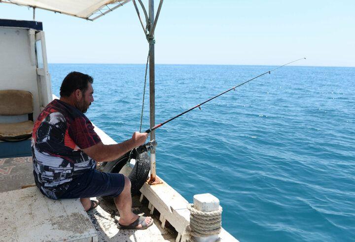 Akdeniz'i istila eden balon balığı tatilcileri korkutuyor - Sayfa 2