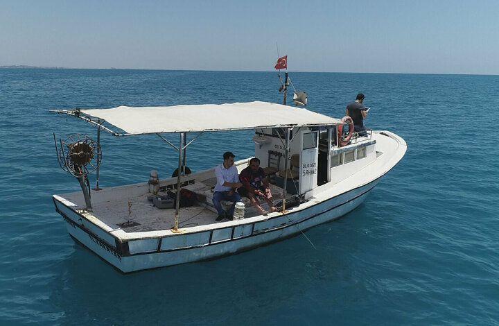 Akdeniz'i istila eden balon balığı tatilcileri korkutuyor - Sayfa 3