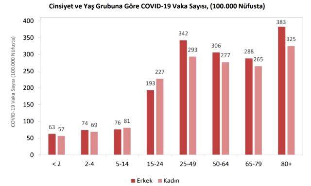 Türkiye'nin koronavirüs raporu açıklandı - Sayfa 2