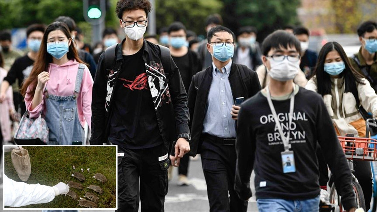 Çin'de 24 saatte öldüren virüs ortaya çıktı