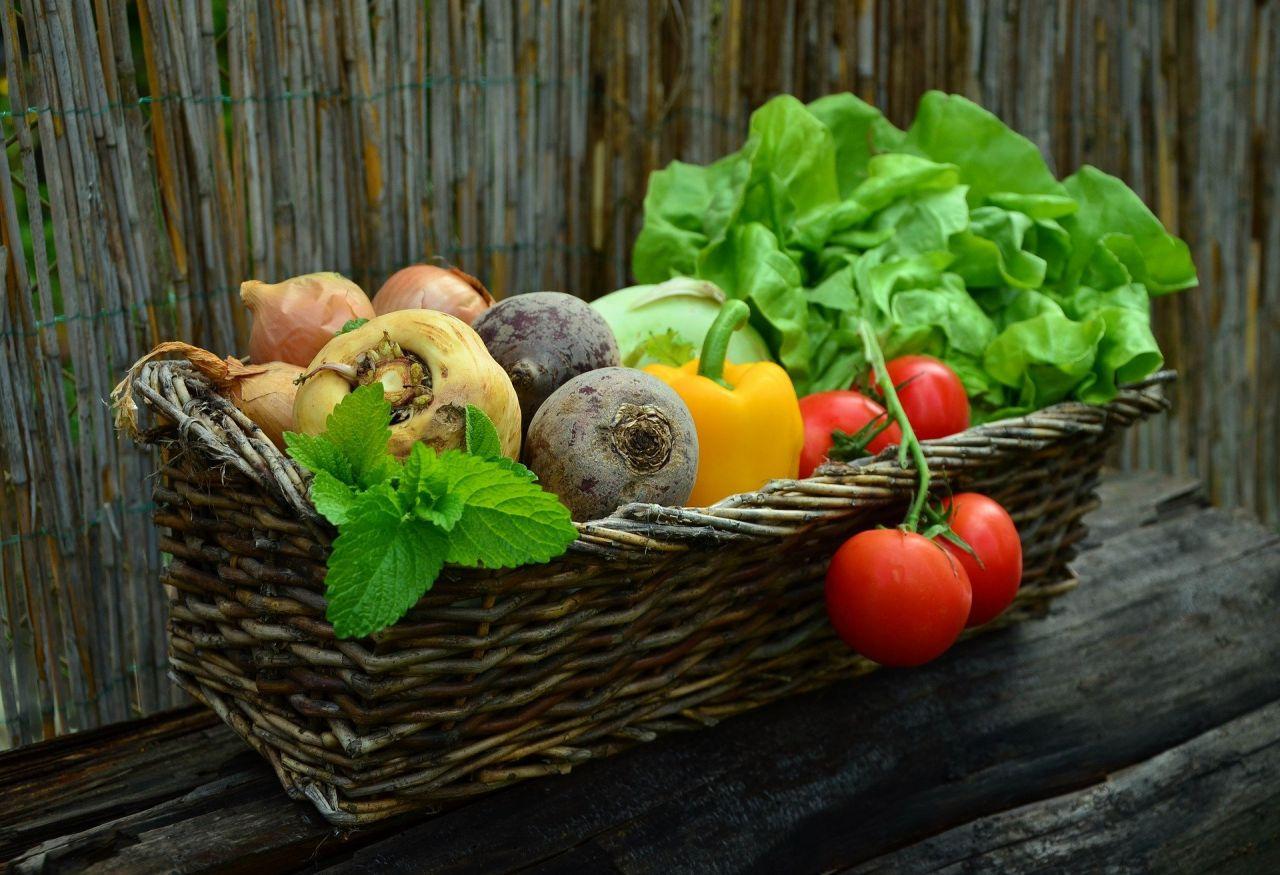 Vitamin nedir? Hangi vitamin ne işe yarar, Yeterince alınmazsa ne olur? - Sayfa 2