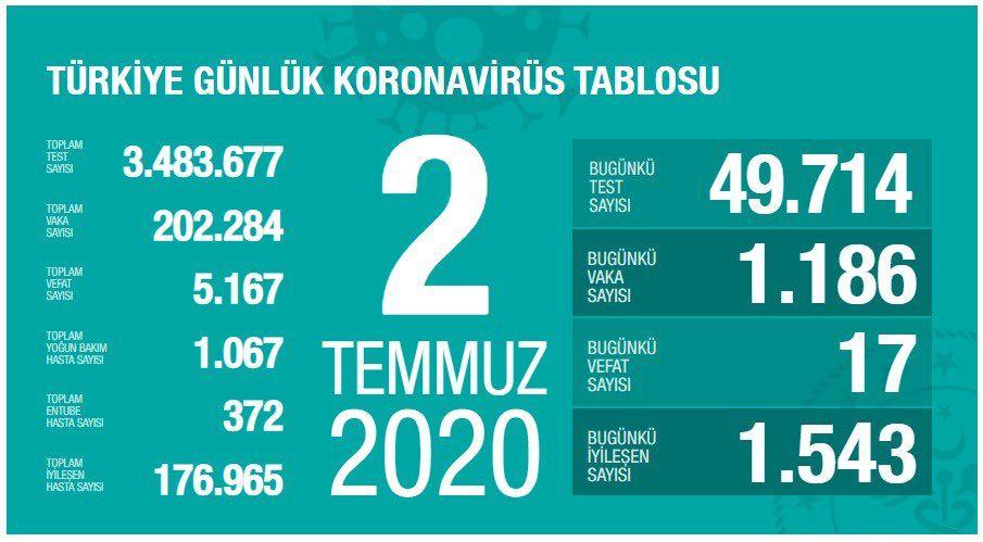 Türkiye'nin Temmuz ayı koronavirüs tablosu - Sayfa 2