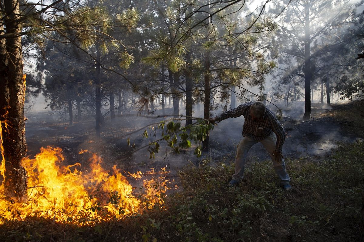 Edirne'de korkutan orman yangını - Sayfa 2
