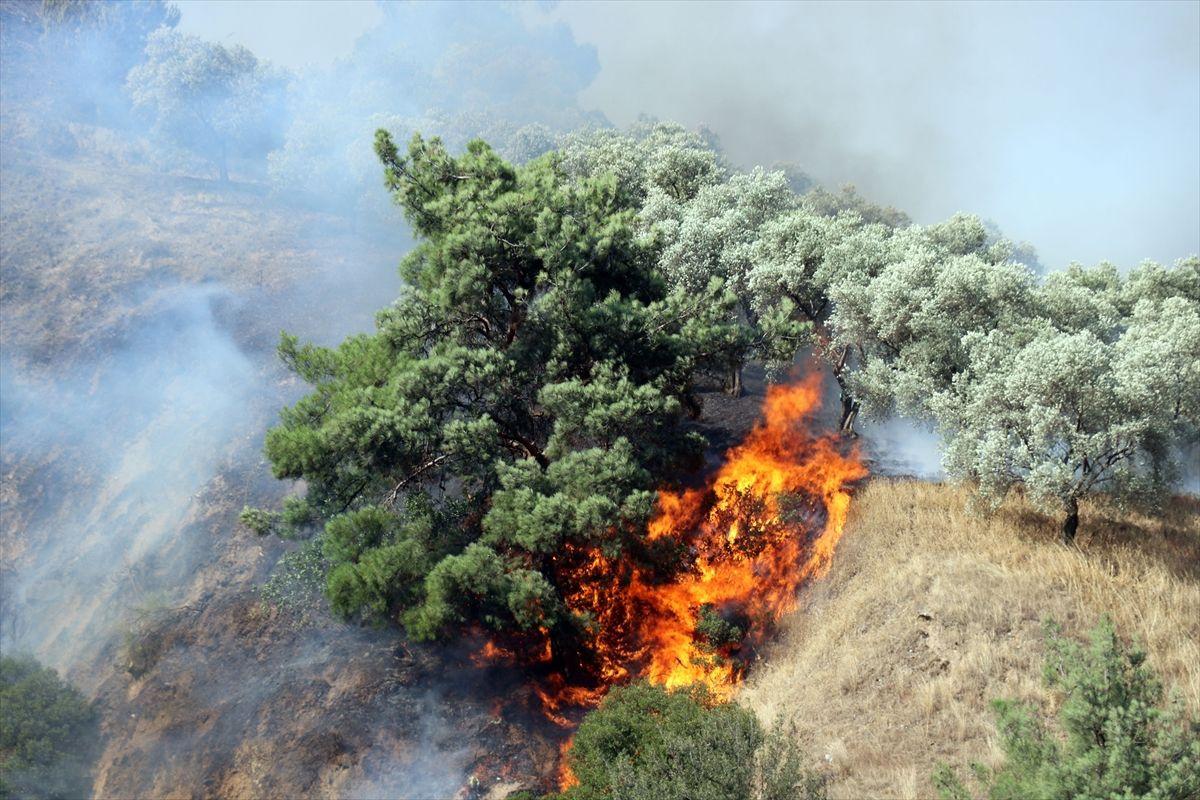 Türkiye'nin dört bir yanında yangın var - Sayfa 4