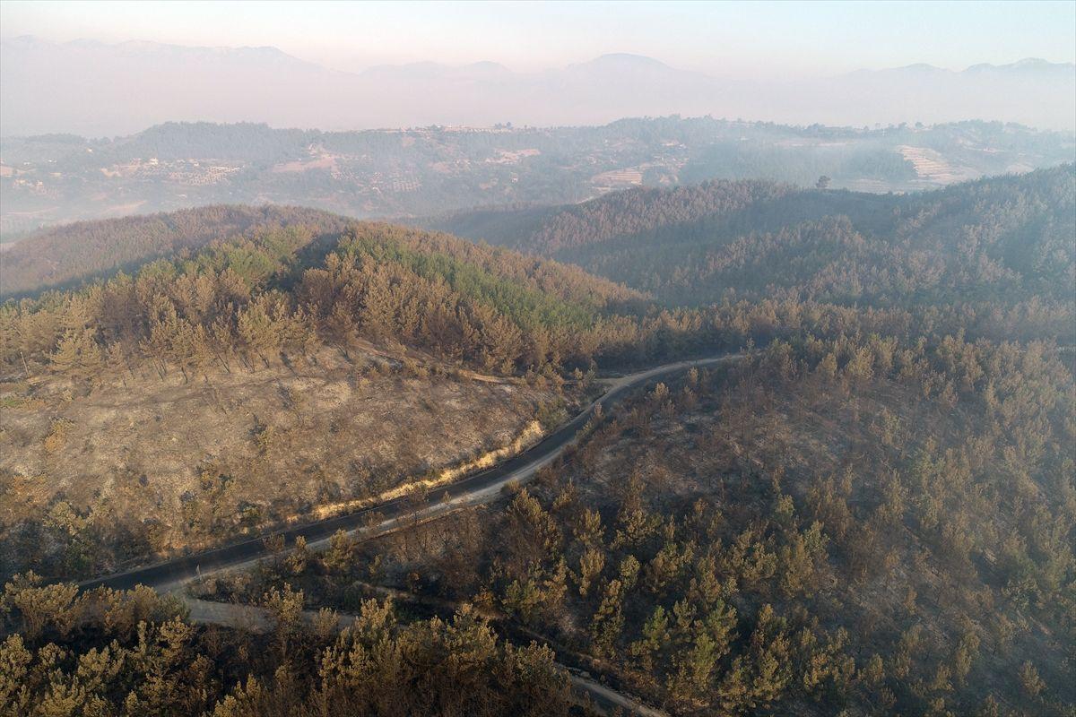 Adana'daki yangınlar 3 gündür söndürülemiyor - Sayfa 3