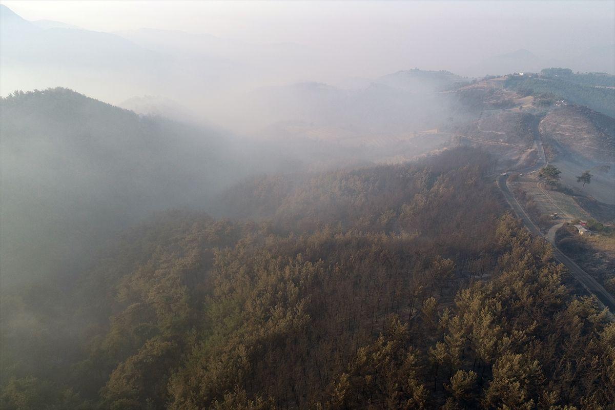 Adana'daki yangınlar 3 gündür söndürülemiyor - Sayfa 4