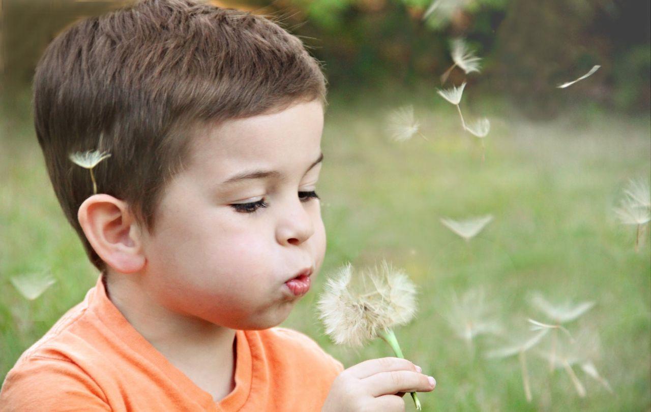 Bilim dünyası kanıtladı: Yeşil alanlarda büyüyen çocuklar daha zeki - Sayfa 3