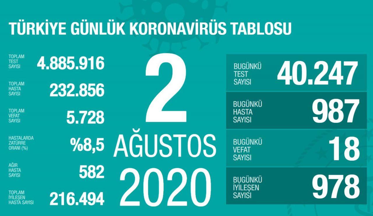 Türkiye'nin gün gün Ağustos ayı koronavirüs tablosu tam liste - Sayfa 2