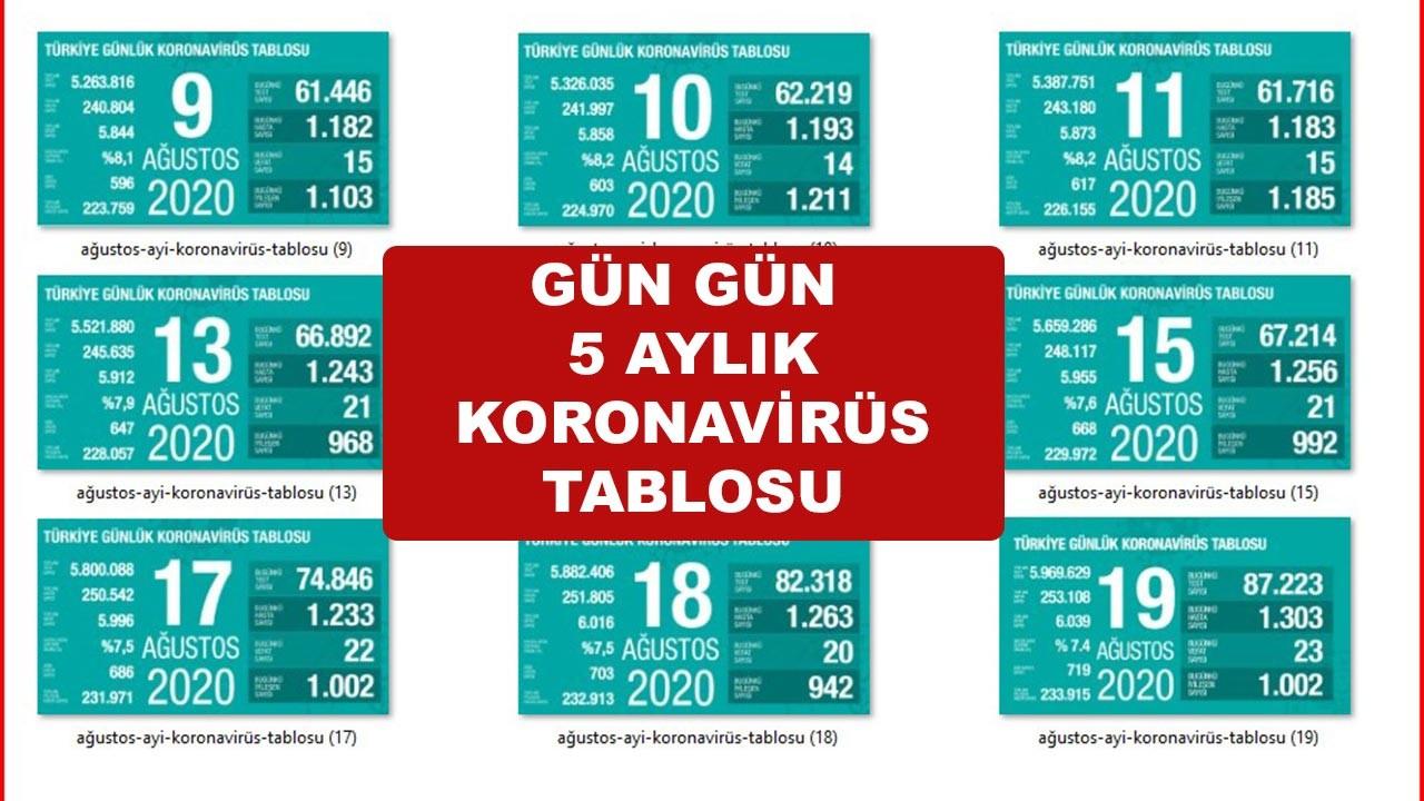 Türkiye'nin gün gün Ağustos ayı koronavirüs tablosu tam liste