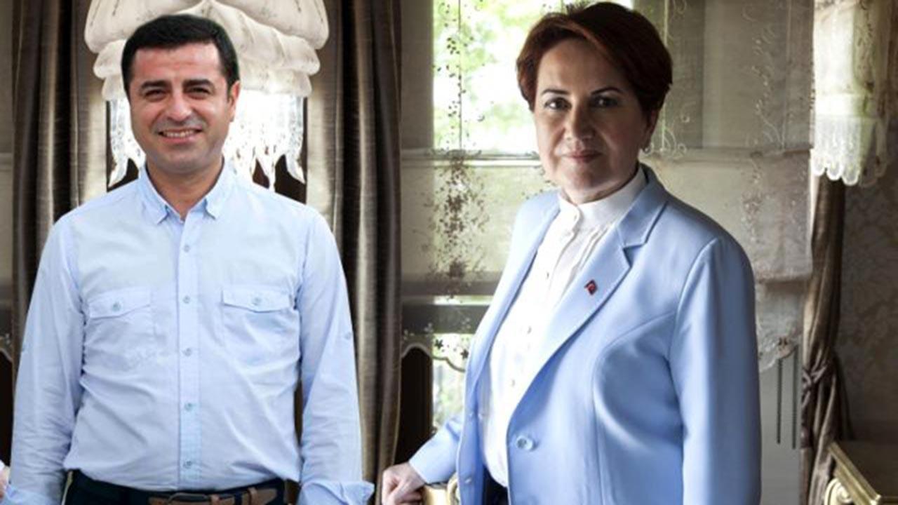 İYİ Parti ile HDP'nin anayasa ortaklığı afişe oldu