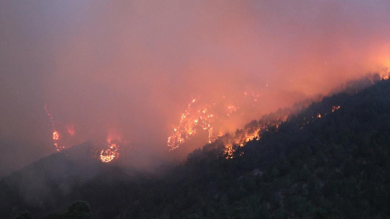 Adana'daki orman yangını hala söndürülemedi - Sayfa 1