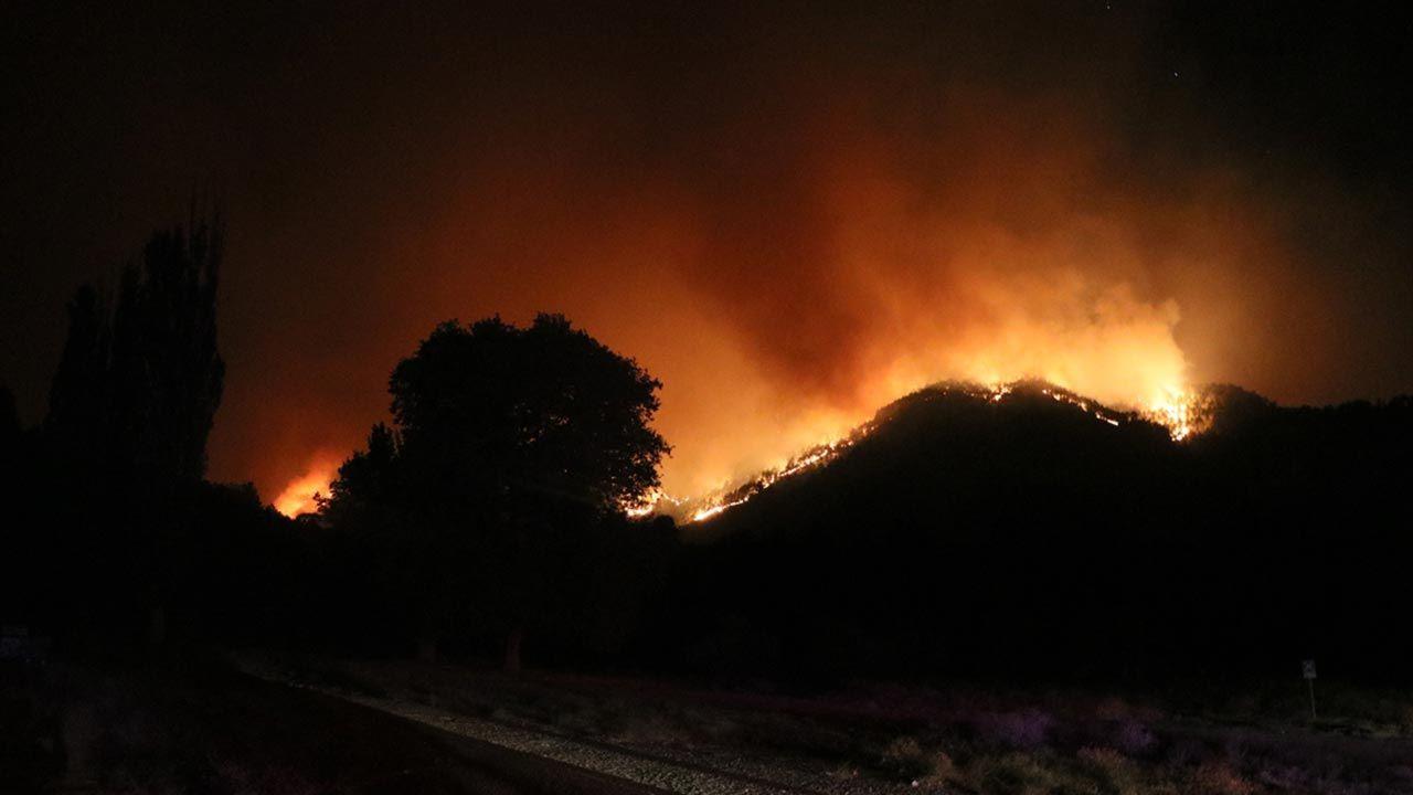 Adana'daki orman yangını hala söndürülemedi - Sayfa 2