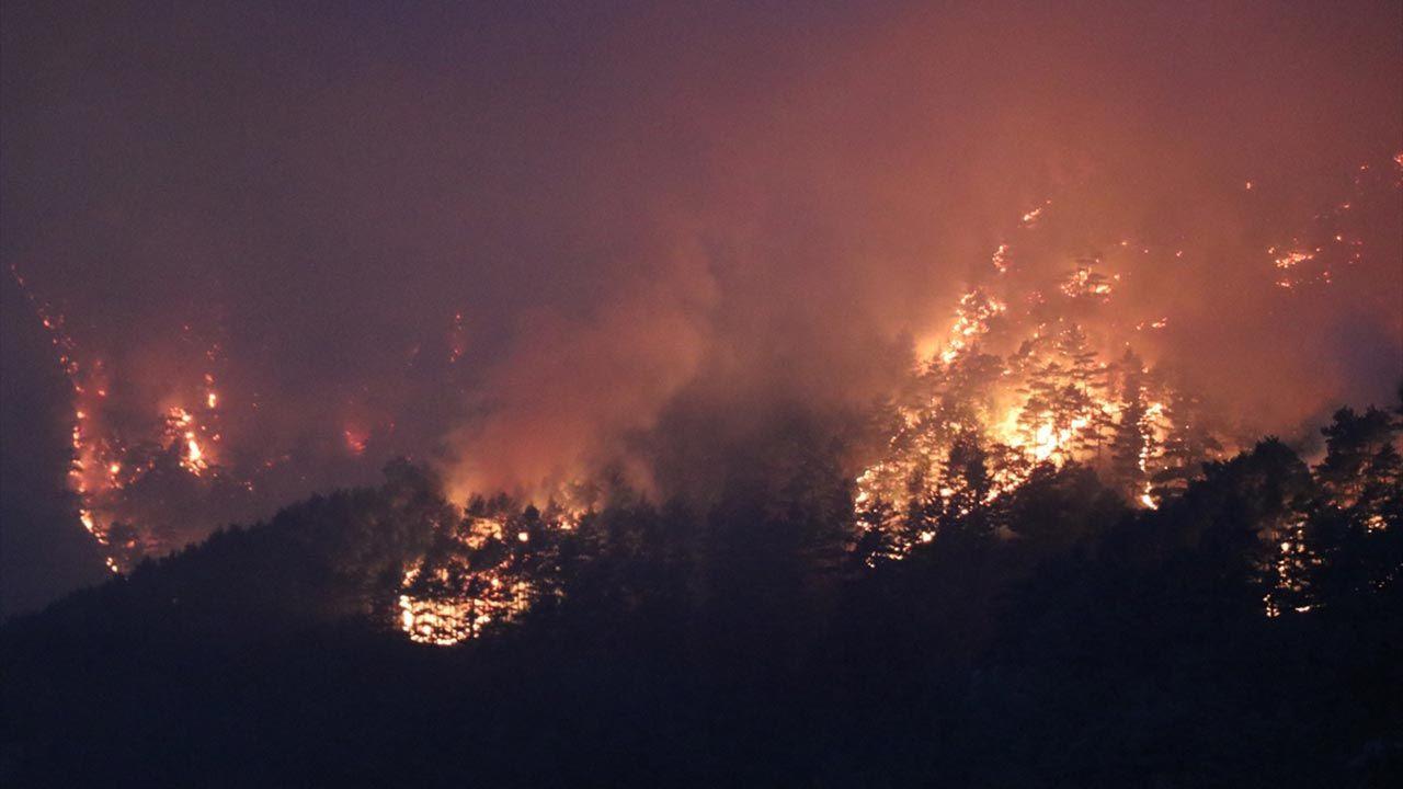 Adana'daki orman yangını hala söndürülemedi - Sayfa 4