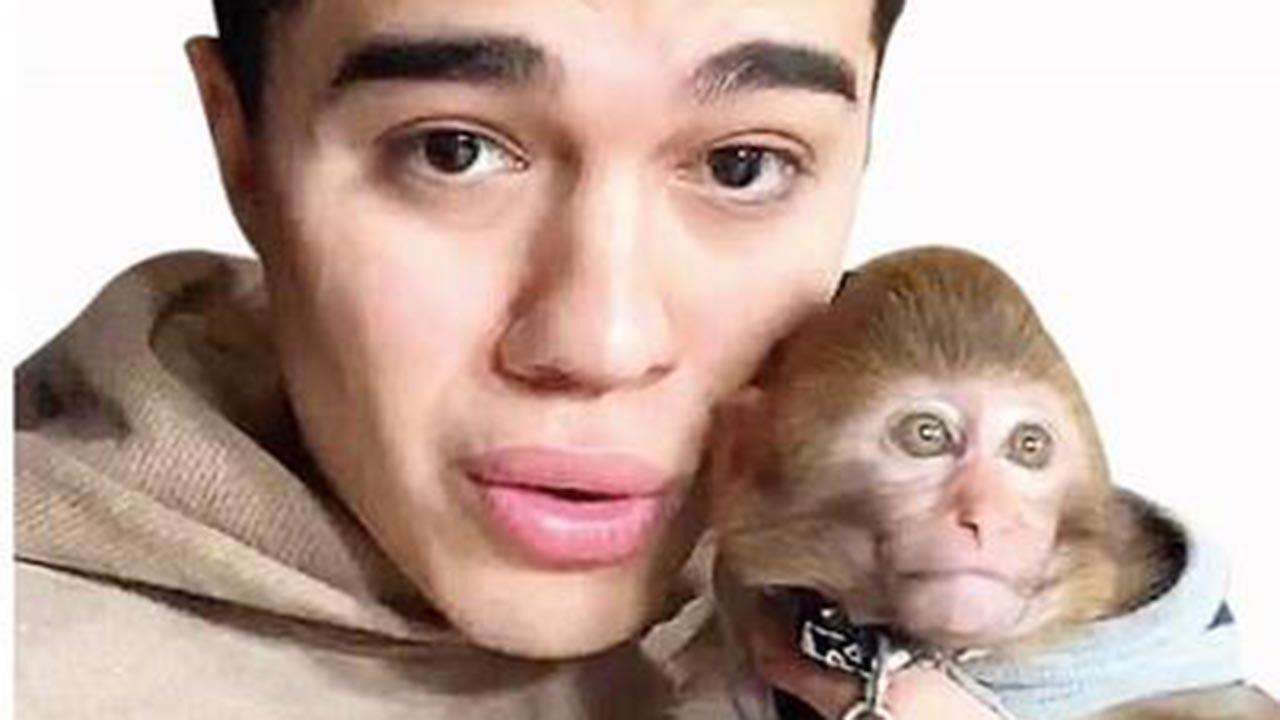 Reyting için canlı yayında maymuna işkence ettiler
