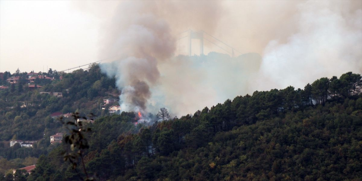 İstanbul Beykoz'da korkutan yangın - Sayfa 3
