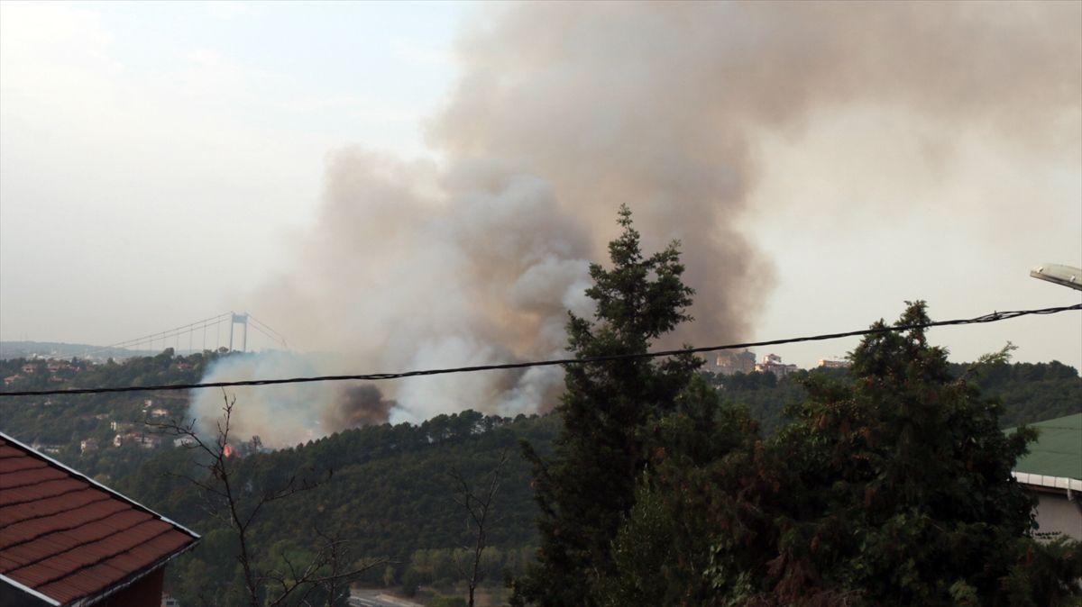 İstanbul Beykoz'da korkutan yangın - Sayfa 4