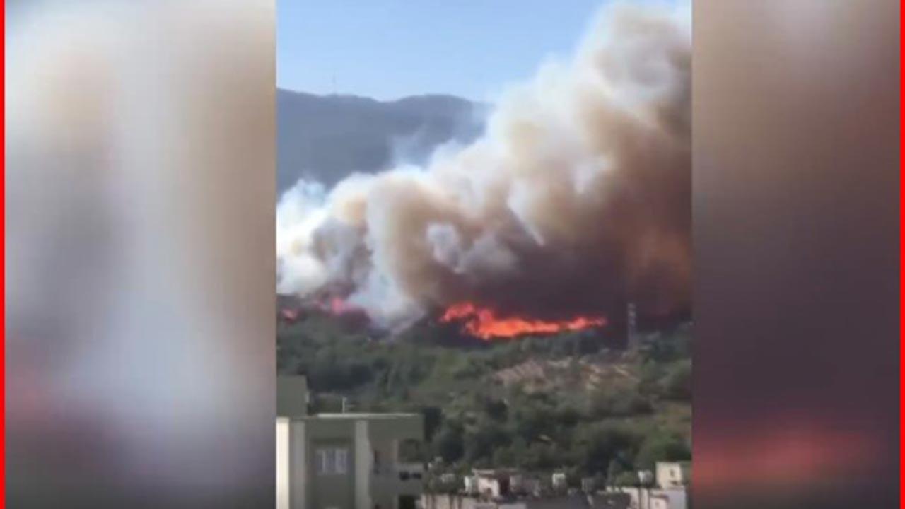 Hatay'daki yangınla ilgili HDP'den açıklama