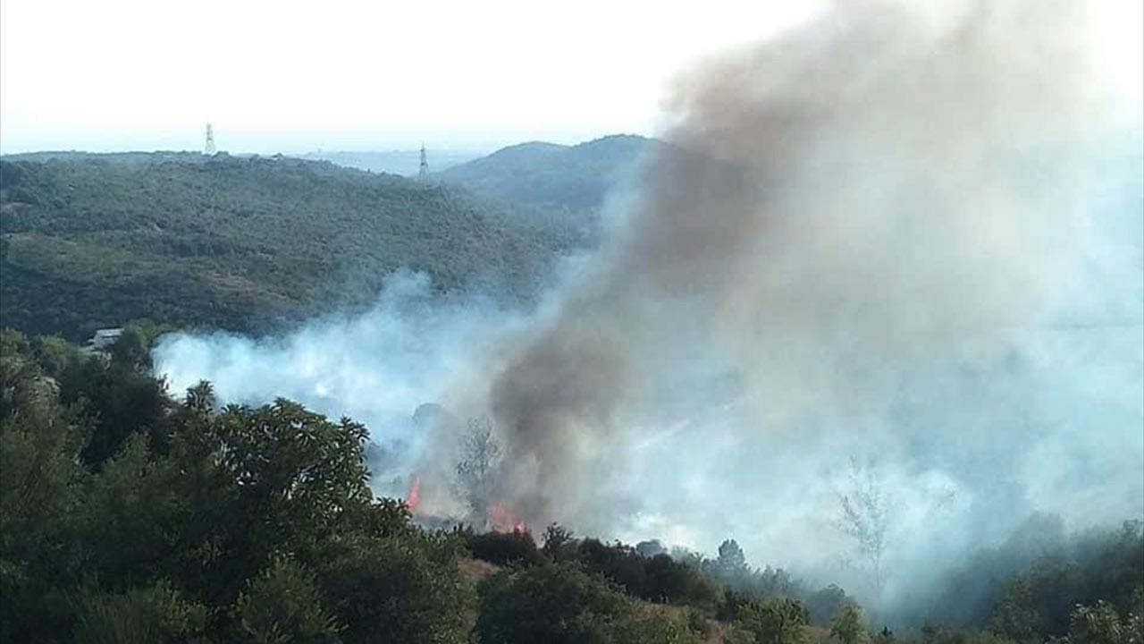 Adana, Mersin, Hatay ve Osmaniye'de aynı anda şüpheli yangınlar