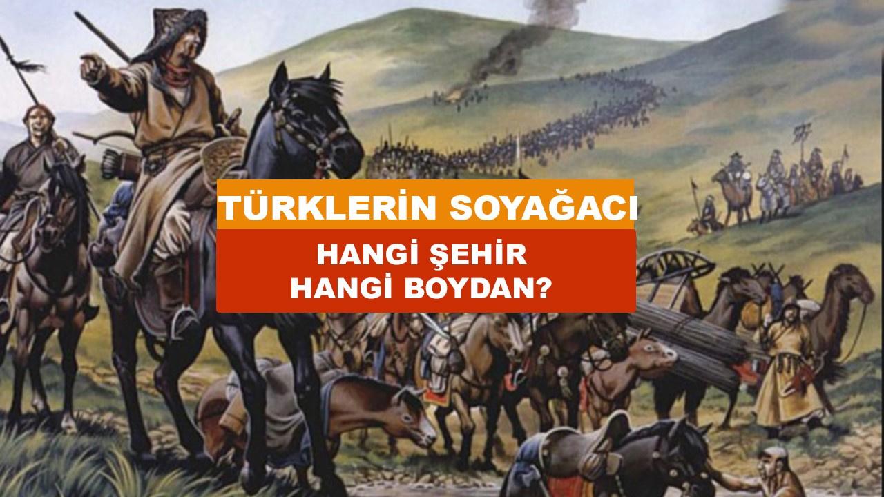 Hangi il hangi Türk boyundan gelmiştir? Türklerin Soyağacı