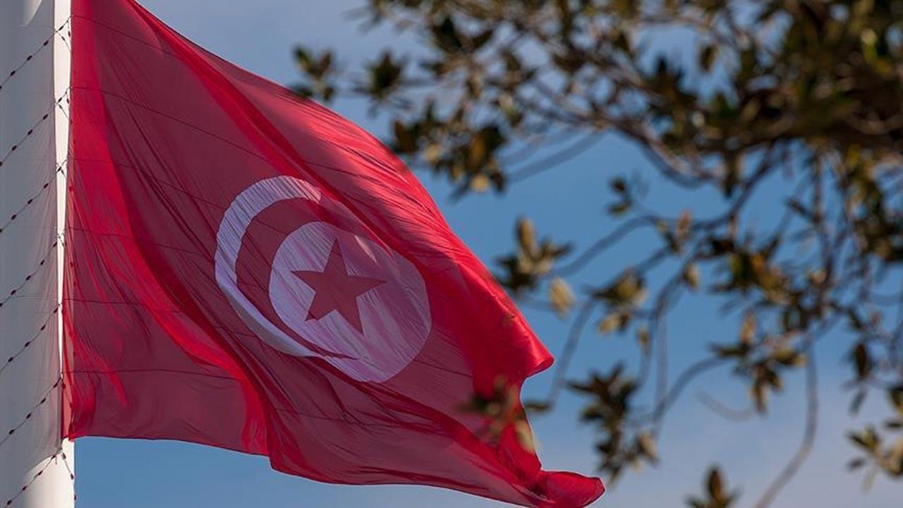 Tunus'taki protestolara Merzuki de katıldı