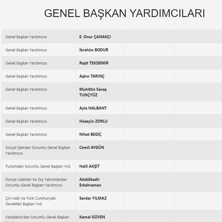 Anadolu Birliği Partisi kurucusu kim?