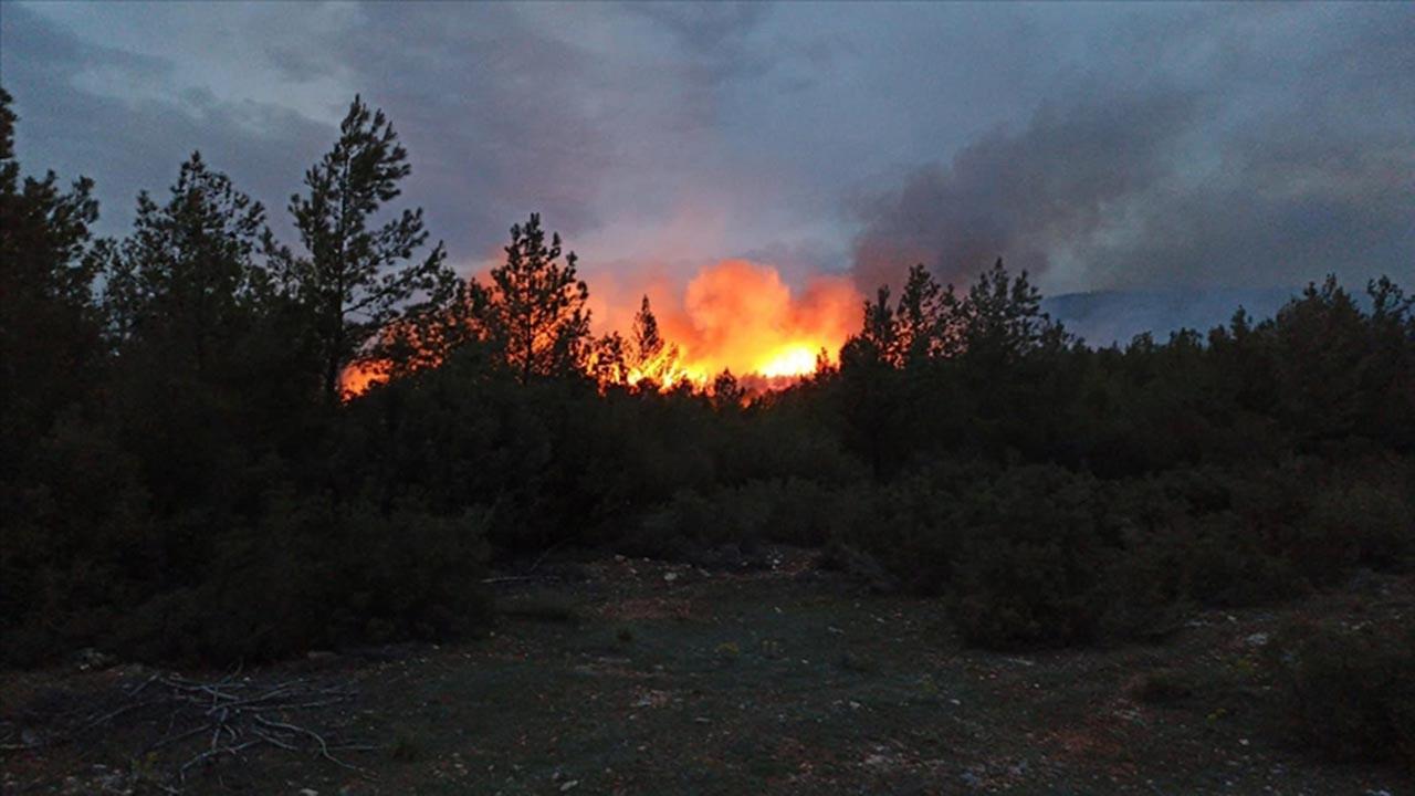 Şüpheli yangınlar Muğla'da başladı