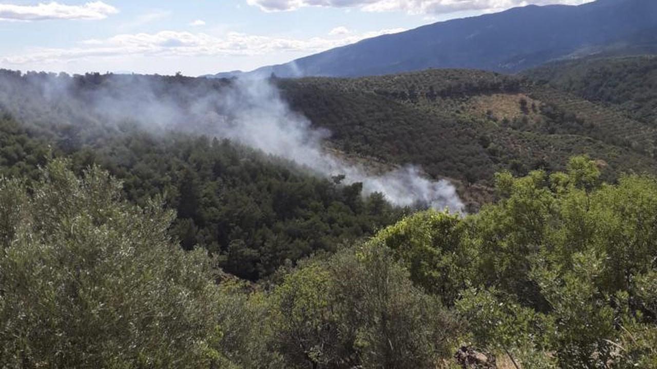 Edremit ilçesinde orman yangını
