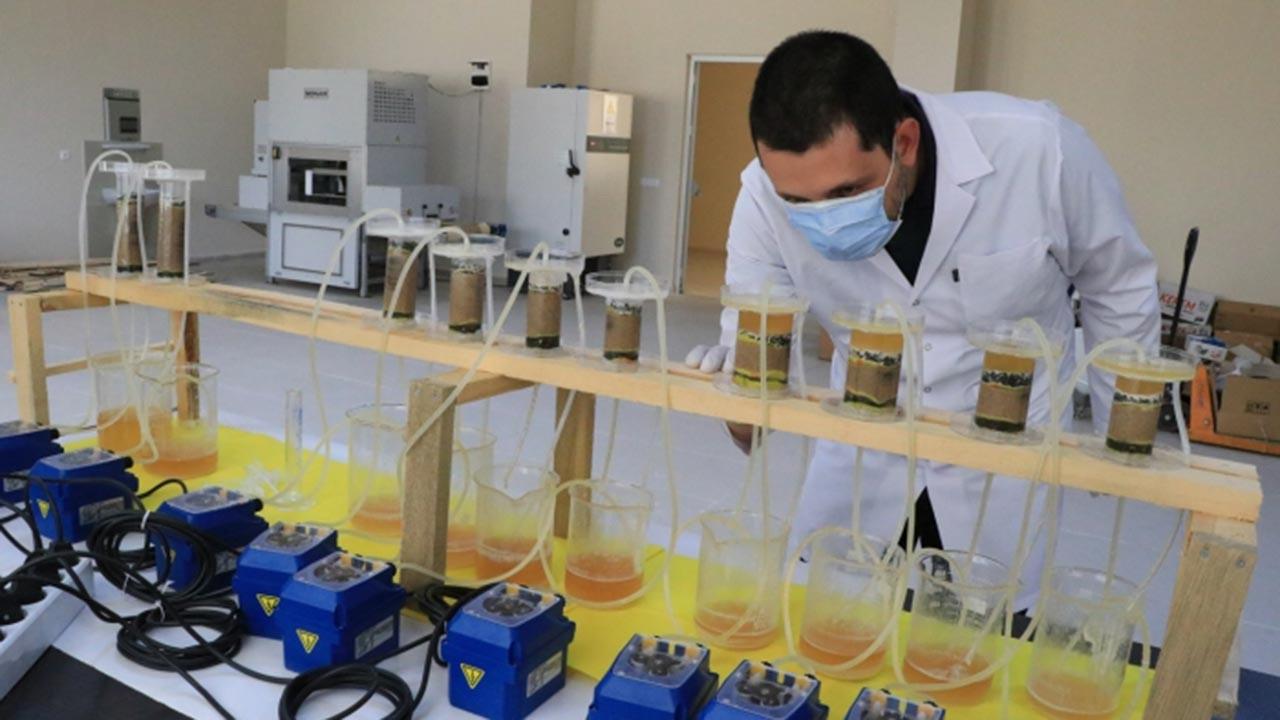 Tarihi binalar bakterilerle güçlendirilecek
