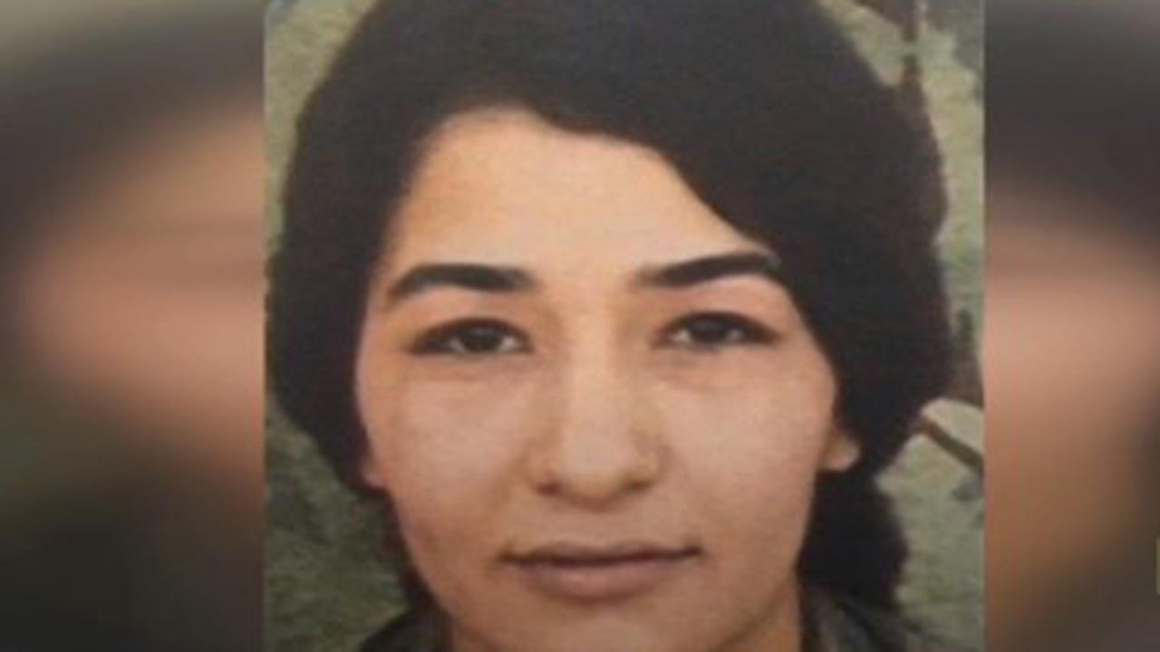PKK üyesi Mahiye Açık ile Suriye uyruklu Roha Raci etkisiz hale getirildi.