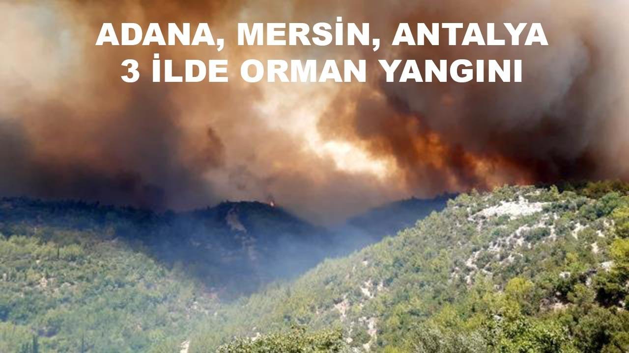 Adana, Mersin, Antalya, Osmaniye, Kayseri...