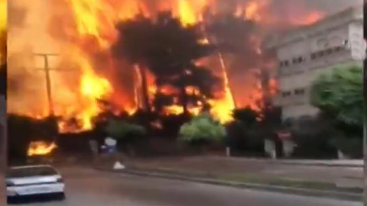 Manavgat'ta 2 bin 300 yapı yandı