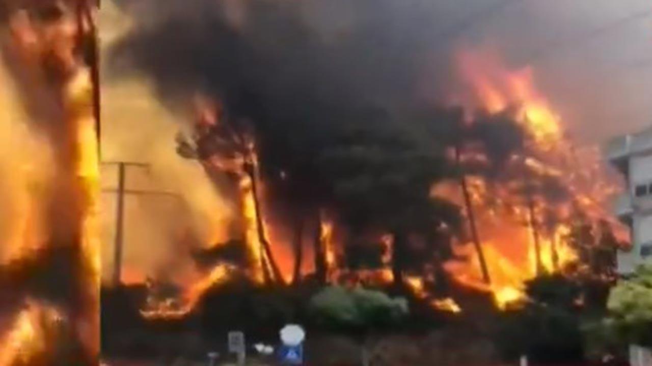 Hatay'da orman yangını, müdahale sürüyor
