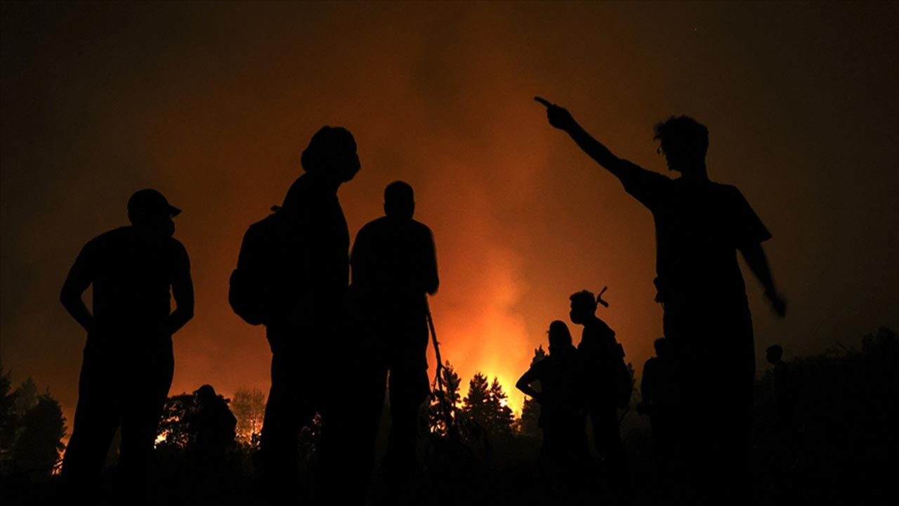 Cezayir'de 18 vilayette orman yangını, 7 ölü
