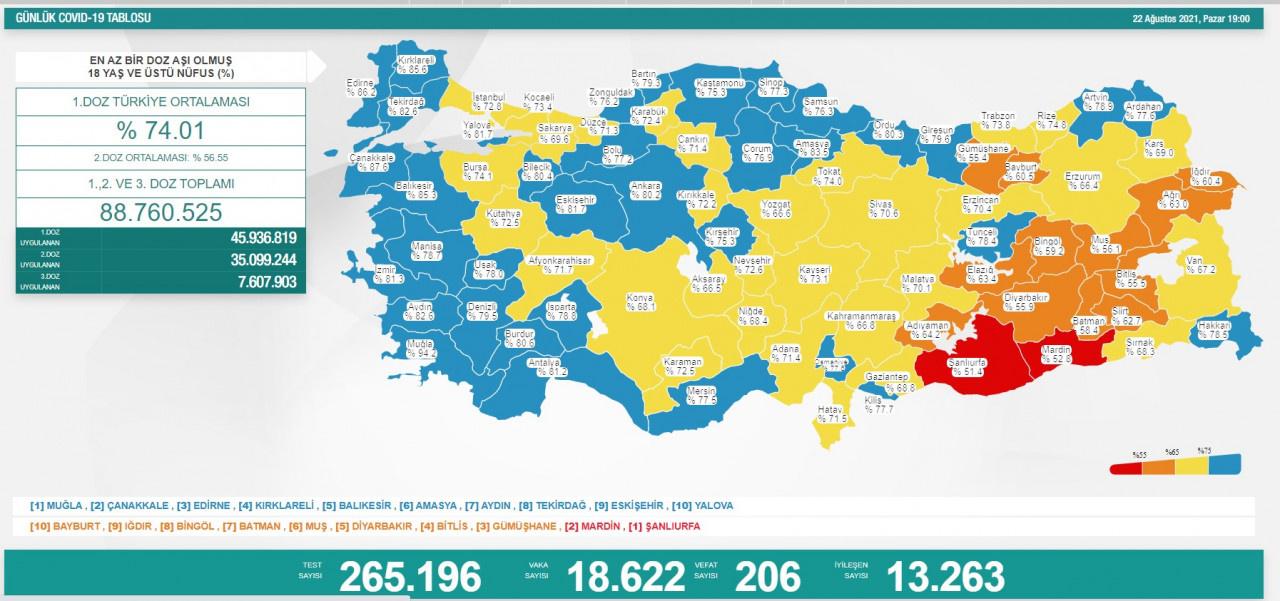 Türkiye'de 22 Ağustos günü koronavirüs nedeniyle 206 kişi vefat etti, 18 bin 622 yeni vaka tespit edildi